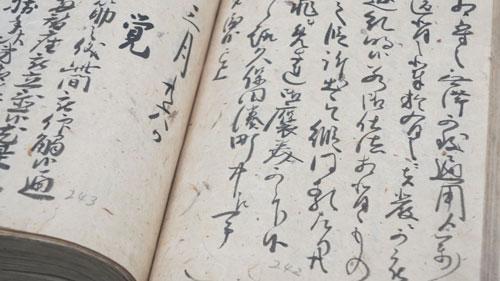 Satake Historical Material Museum, Senshu Park