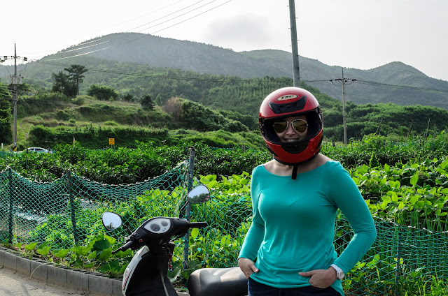 Motorcycle Korea Pohang