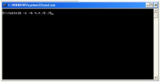 Cara Mengembalikan File yang Terhapus oleh Virus Cara Mengembalikan File yang Terhapus oleh Virus cara mengambalikan file yang hilang 05