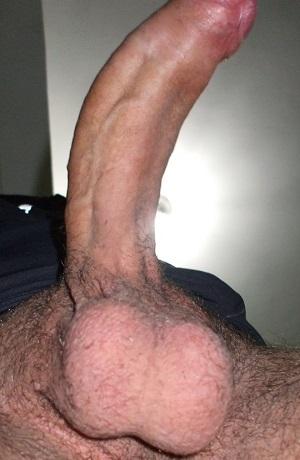 COLABORADOR 52