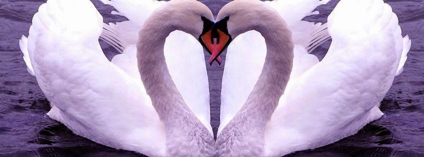 Couverture facebook originale deux amour