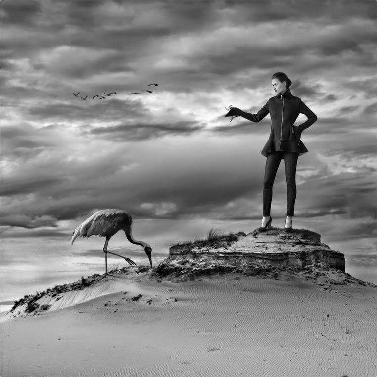 Emerging Photographers, Best Photo of the Day in Emphoka by Dariusz Klimczak, https://flic.kr/p/oBQ8nk