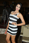 Sanjana latest glam pics-thumbnail-15
