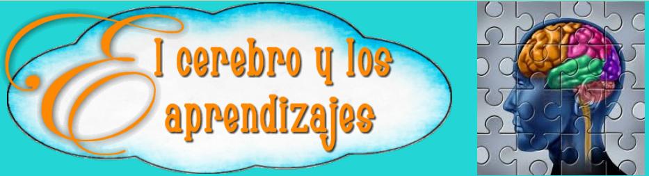 EL CEREBRO Y LOS APRENDIZAJES