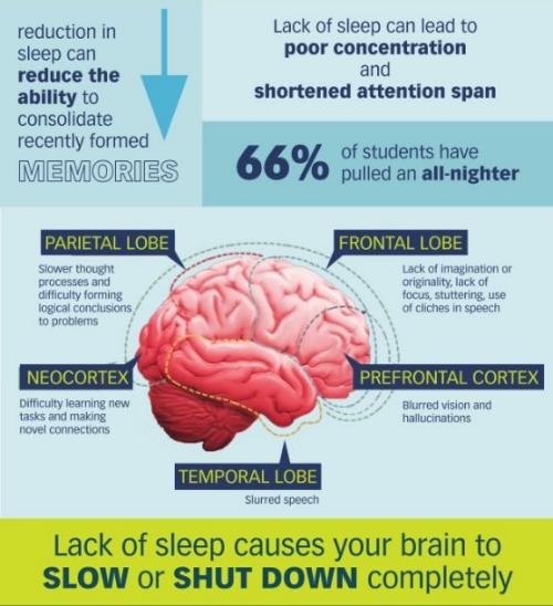 Lipsa de somn şi efectele negative asupra sănătăţii. Sistemul nervos