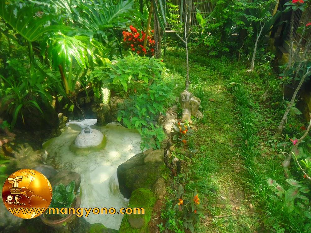 FOTO : Kolam mungil depan rumah. Sambil ngeblogg khan sambil melihat kolam... Iya khan?.