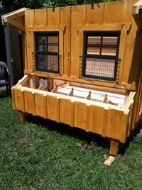 Chicken Coops Building