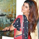 Kausha in Saree  Spicy Photo Gallery