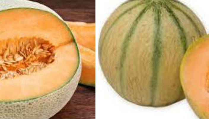 types of muskmelon