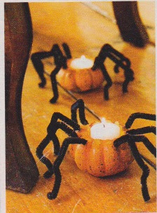 Gourd/pipe cleaner Spider for Halloween