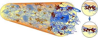 Tetrapod Quantum Dots