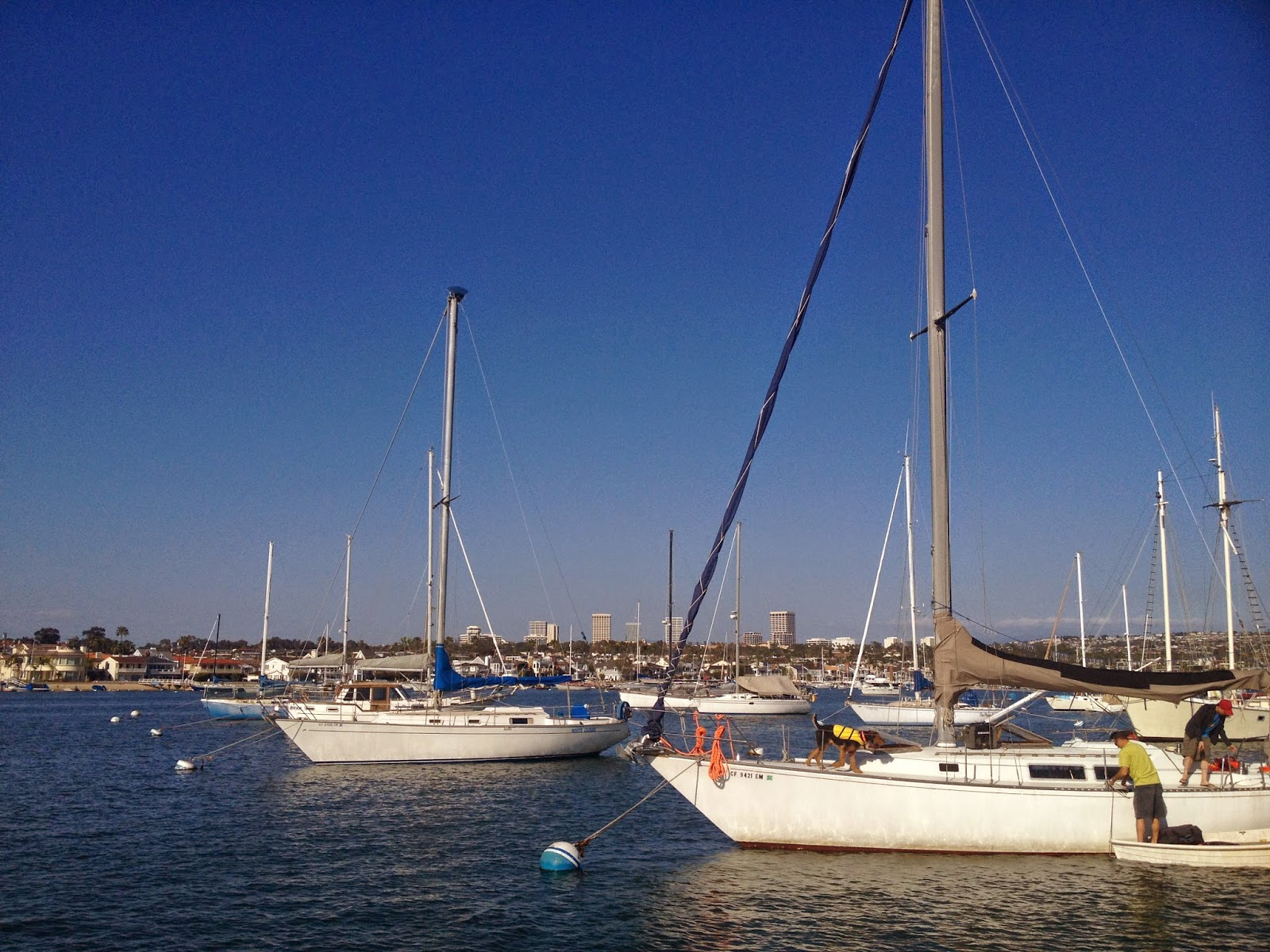 Newport Beach Sail Boats