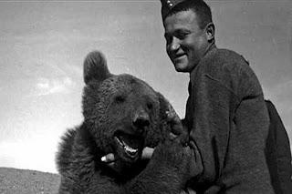 «Wojtek», el pequeño oso pardo