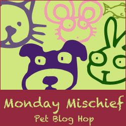 Monday Mischief Blog Hop