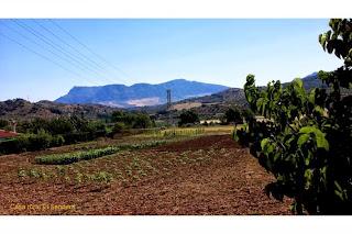 turismo-rural-sendero-el-eurgo-malaga