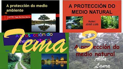 http://petecar.blogspot.com.es/2013/10/a-protecion-do-medio-ambiente.html