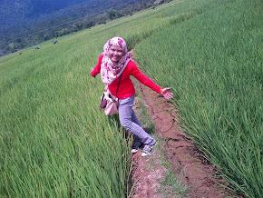 Bukit Tinggi, Sumatera, Indonesia