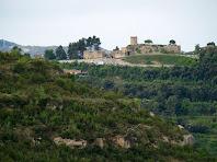 El Castell de Talamanca vist des de la zona de la Vinya Vella de Mussarra