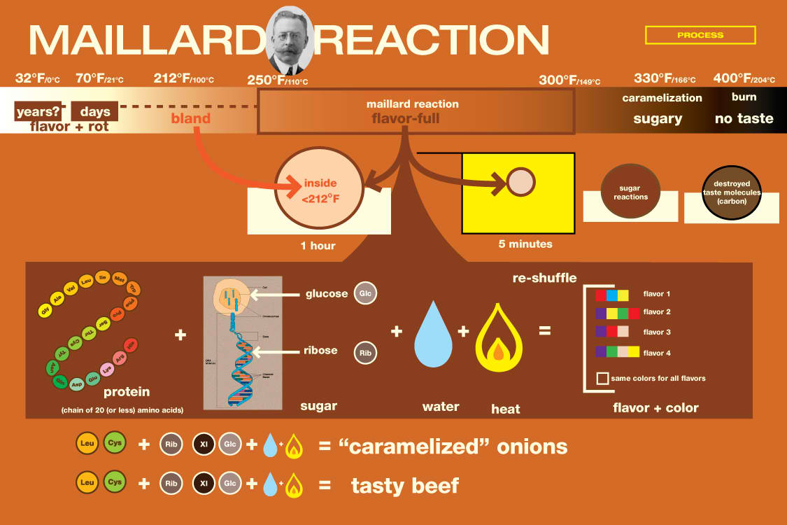 Culinary Physics Maillard Reaction Mechanism And Its