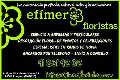Presentacion de Efimer Floristas