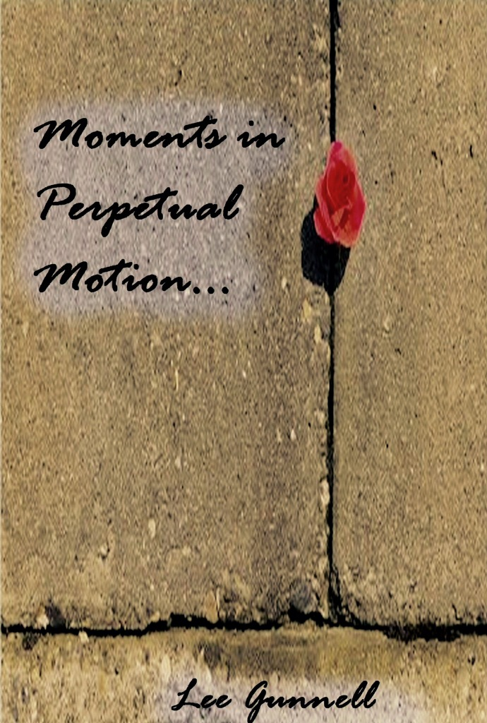 Paperback: Moments in Perpetual Motion. £8.99 ($9.99)