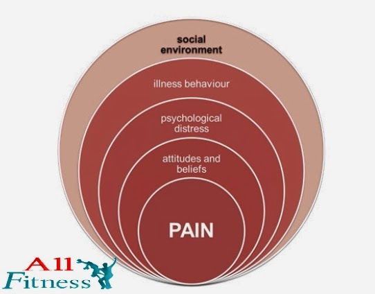 Biopsychosocial model of low back disability