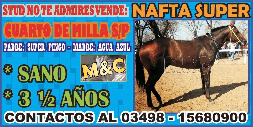 STUD NO TE ADMIRES - NAFTA - 01/07/14