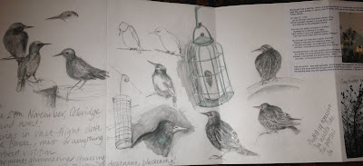 Starlings in sketchbook