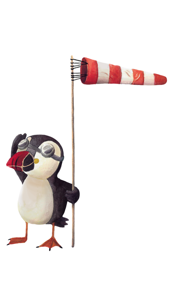 Puffin & Windsock - Jen Haugan Animation & Illustration
