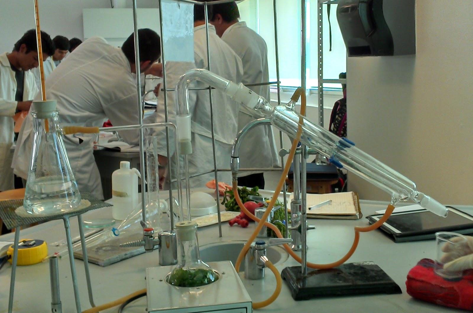 Qu mica experimental equipo 9 semestre 1 2013 pr ctica 5 for Laboratorio con alloggi