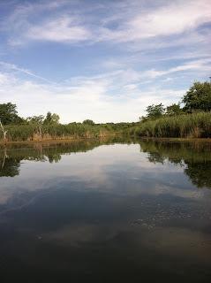 Fishing at Banner Marsh