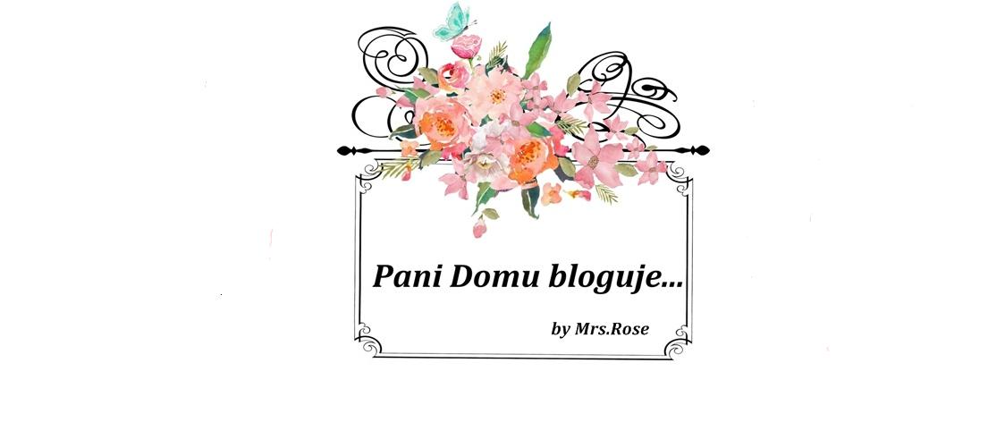 Pani Domu bloguje...