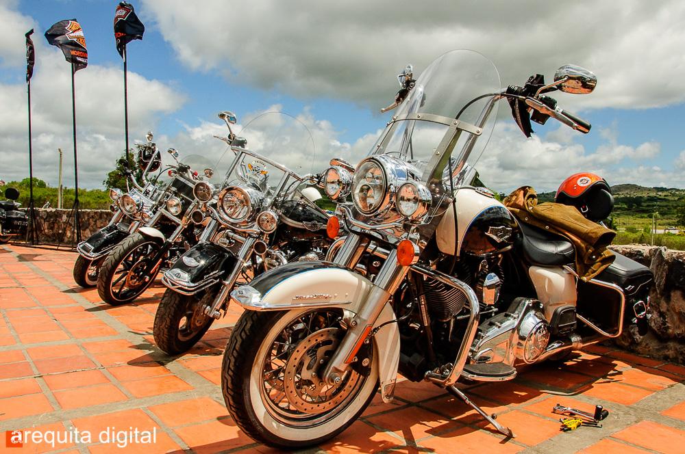 Harley-Davidson-1.jpg