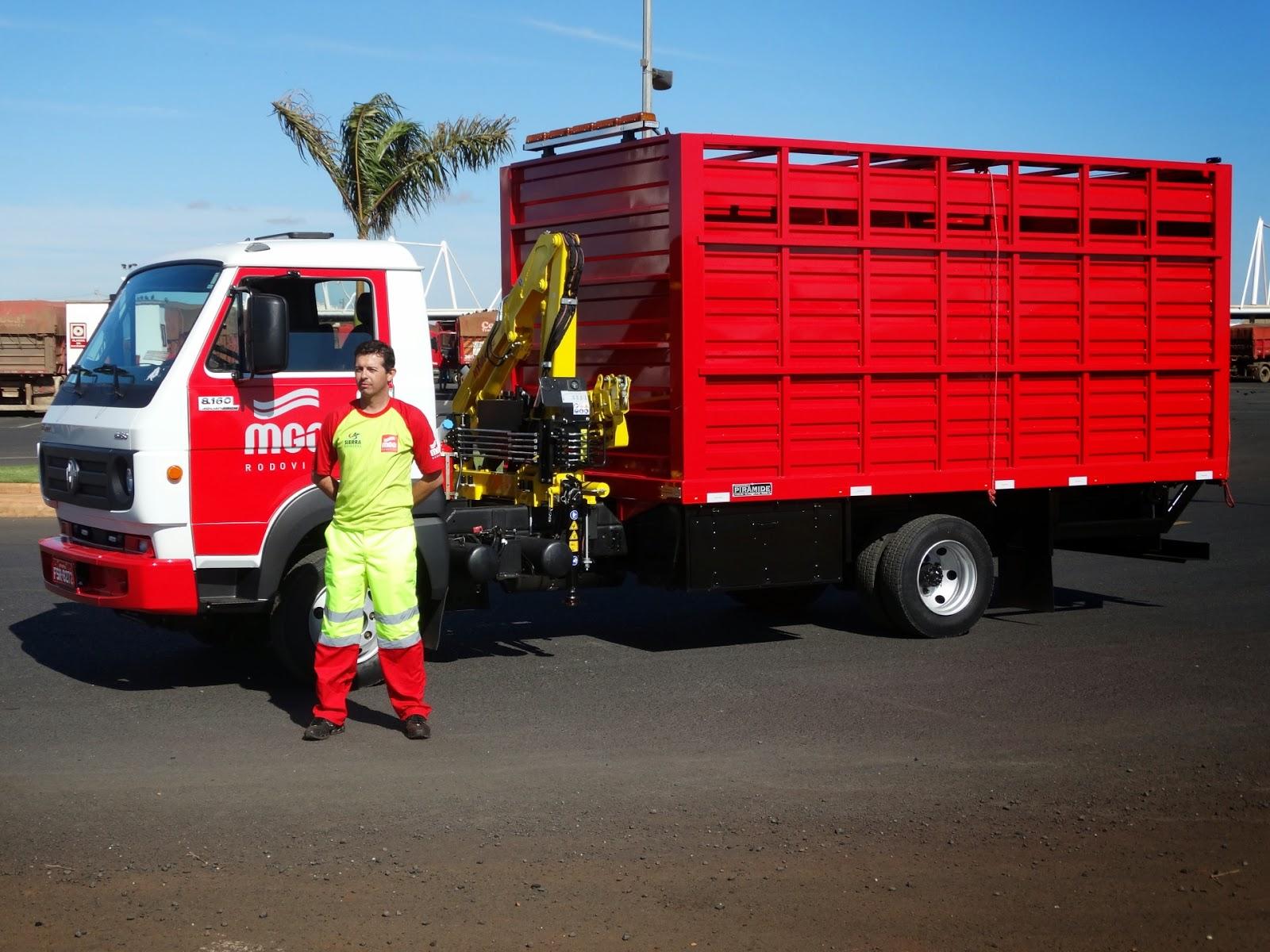 Caminhão para apreensão de animais na BR 050