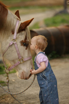 Download Freely picture of lovely baby girl kissing pet horse