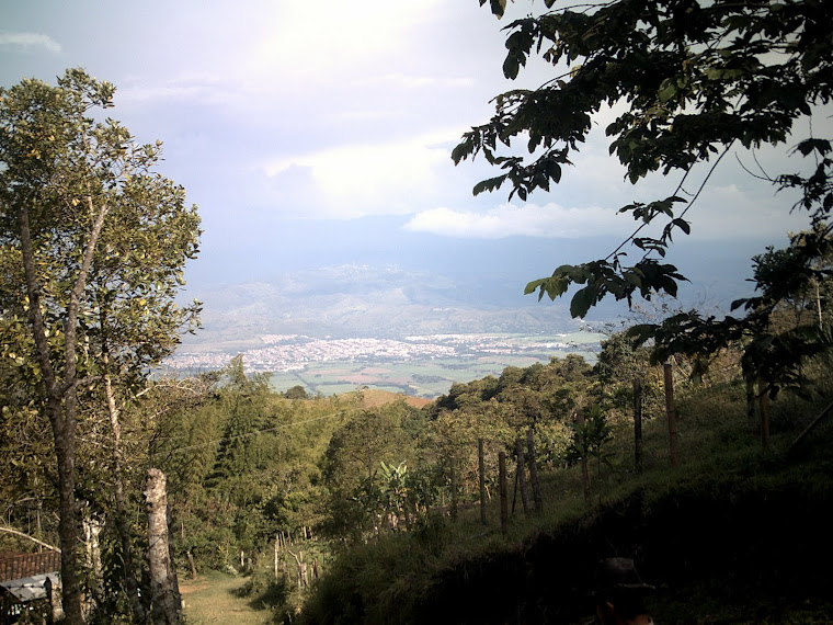 VALLE DEL CAUCA