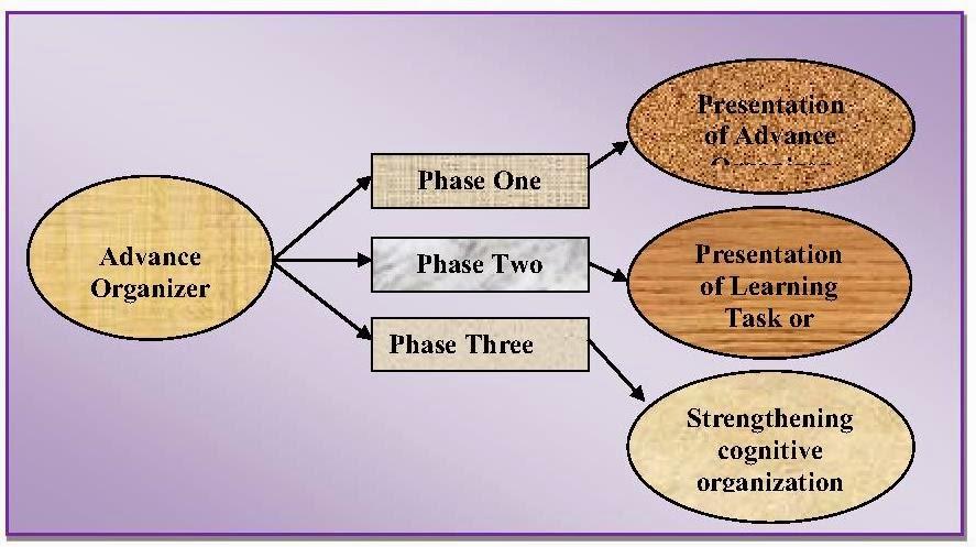 logical organization essay
