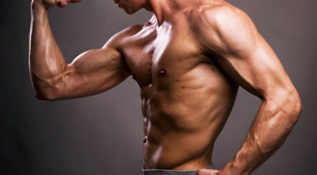 How Long Does It Take To Build Muscles