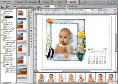 3D-Album PicturePro Platinum 3.1