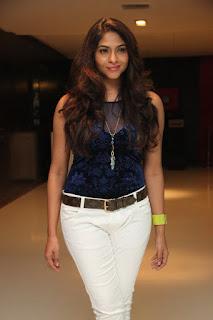 Lakshmi Devy Pictures at Masala Padam Movie Audio Launch   (13).jpg