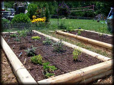 Raised Herb Garden Design Photograph garden designs 12