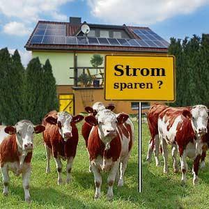 Photovoltaik: Bauer und Landwirt profitieren von Bioenergie
