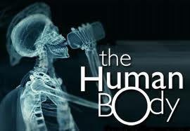 Weird facts about human body :