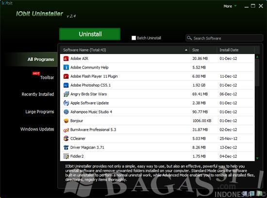 IObit Uninstaller 2.4 Portable 2