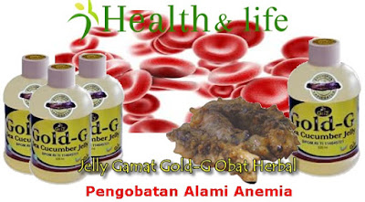 Pengobatan Alami Anemia Secara Tradisional