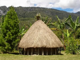 Honai - Traditional Houses of Papua
