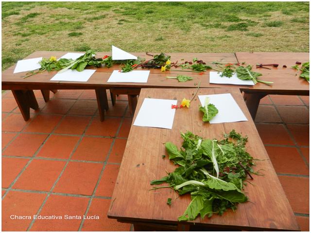 Los materiales preparados esperando a los alumnos - Chacra Educativa Santa Lucía