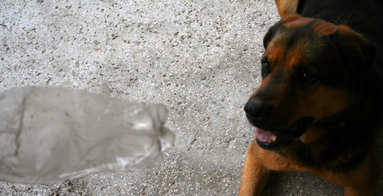 Focused on the bottle