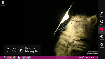 Cute Cats Theme For Windows 8