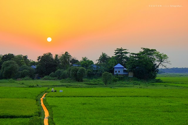 beautiful nature bangladesh picture
